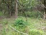 4 A Vista Oak Drive - Photo 6