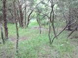 4 A Vista Oak Drive - Photo 7