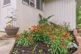 4607 Orchid Street - Photo 22