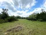 LBR 46 Buffalo Ridge Rd - Photo 3
