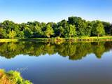4710 Duck Creek Drive - Photo 11