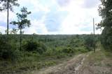 tbd County Road 3940 - Photo 9