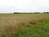 TBD County Rd 4606 - Photo 4