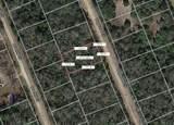 Lot 8 Dogwood Circle - Photo 1