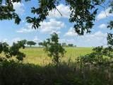 TBD County Road 227 - Photo 2