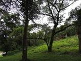 934 Sleepy Hollow Drive - Photo 1