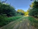 LOT 2 County Road 318 - Photo 7