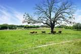 575 County Road 1214 - Photo 22