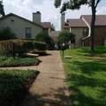 11311 Audelia Road - Photo 22