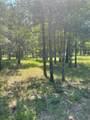 LOT167 Post Oak Cove - Photo 3