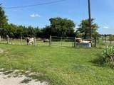 5267 County Road 660 - Photo 34