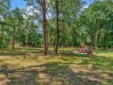 14124 Hickory Tree Lane - Photo 2