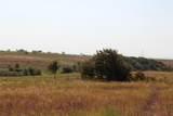 12132 Bella Vino Drive - Photo 5