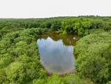 308acre Taylorsville Rd, Red R - Photo 14