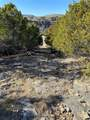 2040 Bluff Creek Drive - Photo 2
