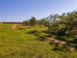 1127 County Road 300 - Photo 12