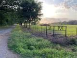 TBD County Road 1060 - Photo 5