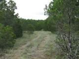 TBD County Road 160 - Photo 11