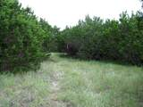 TBD County Road 160 - Photo 21