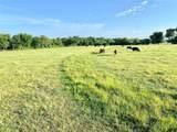 Acreage County Road 1157 - Photo 1