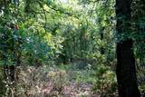 00 Mineral Springs - Photo 4