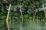 15 Solemn Lagoon - Photo 14
