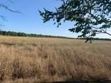 566 Deer Lane - Photo 3