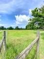 21987 County Road 445 - Photo 18