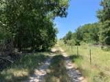65 AC County Rd 253 - Photo 11