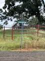 TBD County Road 1200 - Photo 14