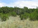 TBD-22 County Rd 102 - Photo 13