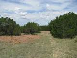 TBD-22 County Rd 102 - Photo 4