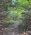9535 East Fork Circle - Photo 3