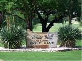 1015 White Bluff Drive - Photo 22