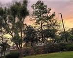 24066 Sun Ridge Road - Photo 1