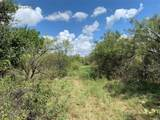 14385 County Road 304 - Photo 13