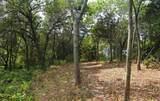 923 Brookwood Drive - Photo 6