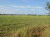 TBD County Road 336 - Photo 2