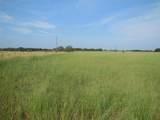 TBD County Road 336 - Photo 4