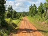 TBD County Road 394 - Photo 5