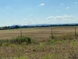 4950 Highway 1689 - Photo 14