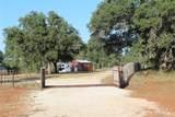 919 County Road 331 - Photo 23