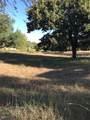 7016 Westover Drive - Photo 2