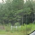 0 Truevine Road - Photo 2