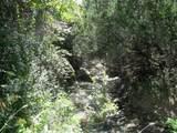 725 County Road 159 - Photo 20
