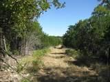 TBD Indian Creek Road - Photo 10