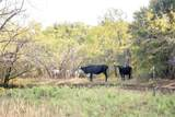 3235 County Road 142 - Photo 15