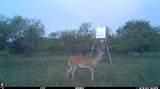 4109 County Road 328 - Photo 1
