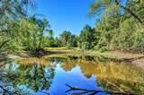 532 Shawnee Trail - Photo 38