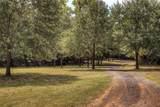 15192 County Road 1113 - Photo 33